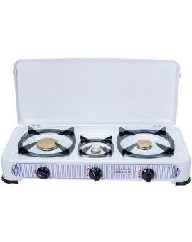 ThermoGatz home cooker two and a half stove